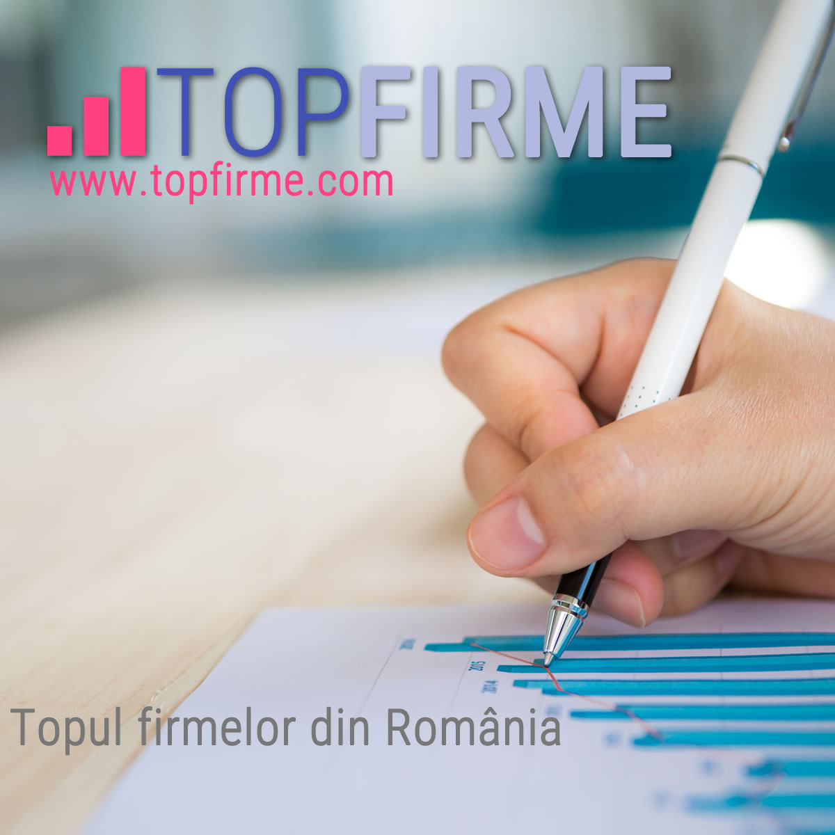 www.topfirme.com